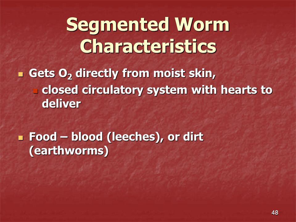 Segmented Worm Characteristics