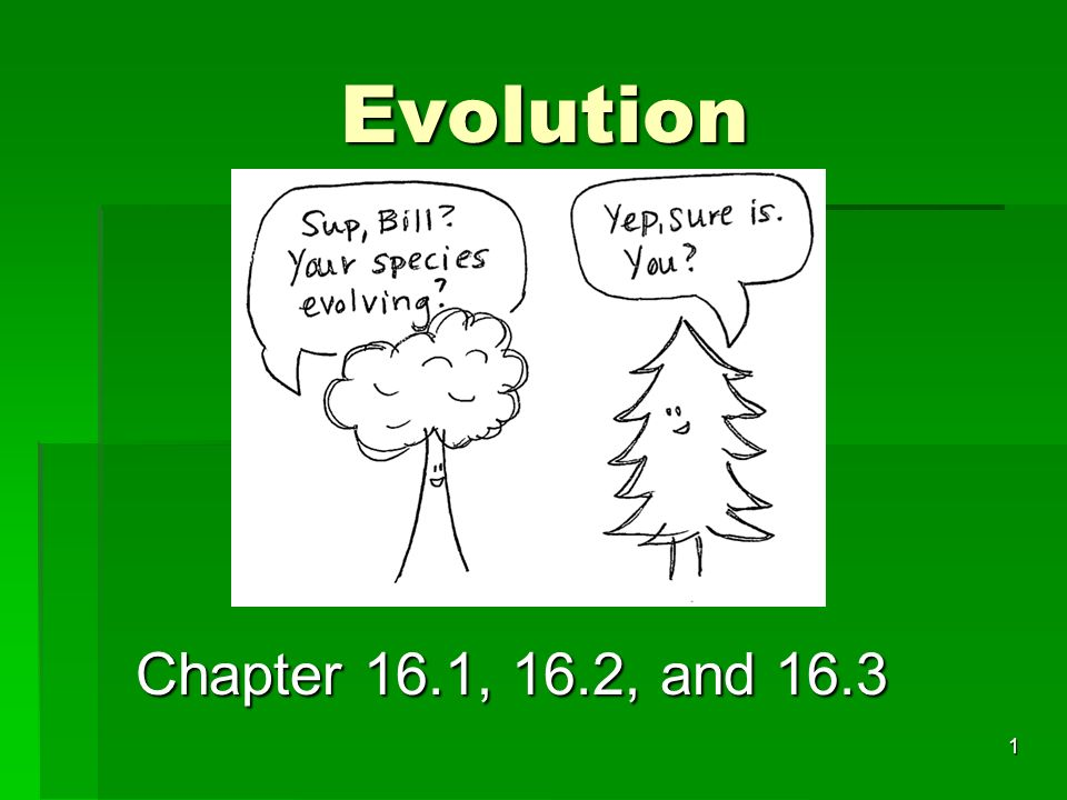 Evolution Chapter 16.1, 16.2, and 16.3