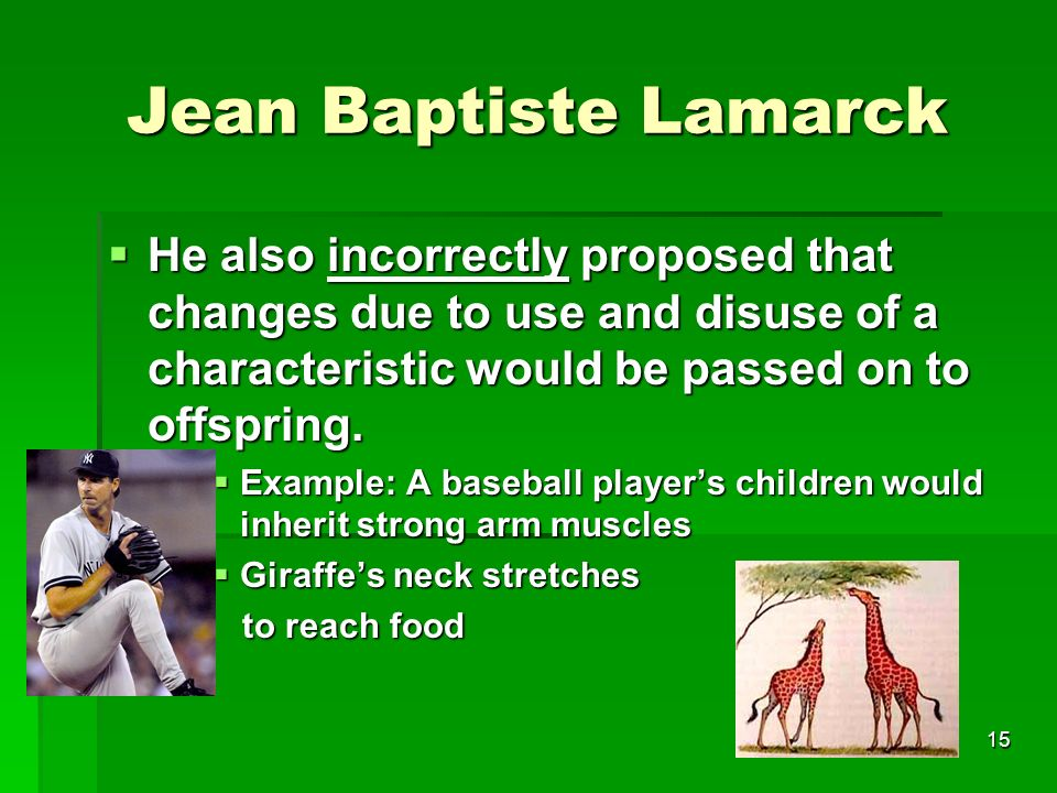 Jean Baptiste Lamarck He also incorrectly proposed that changes due to use and disuse of a characteristic would be passed on to offspring.