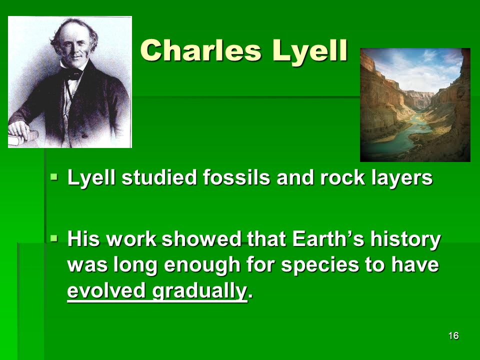Charles Lyell Lyell studied fossils and rock layers