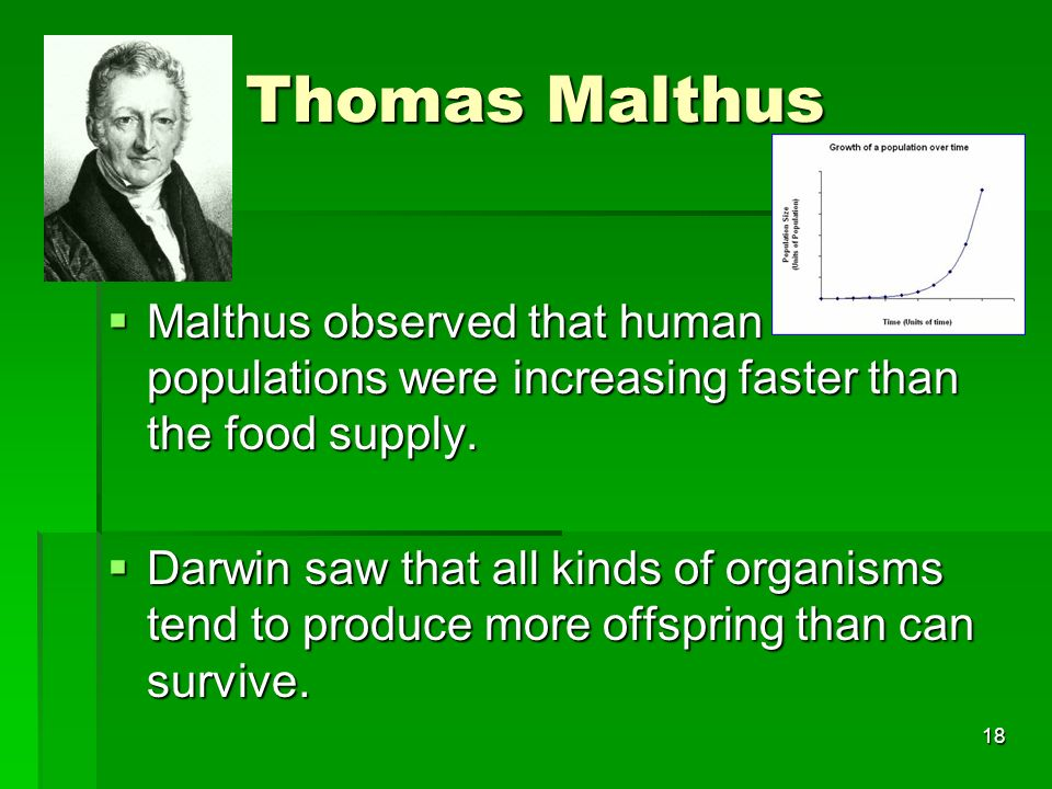 Thomas Malthus Malthus observed that human populations were increasing faster than the food supply.