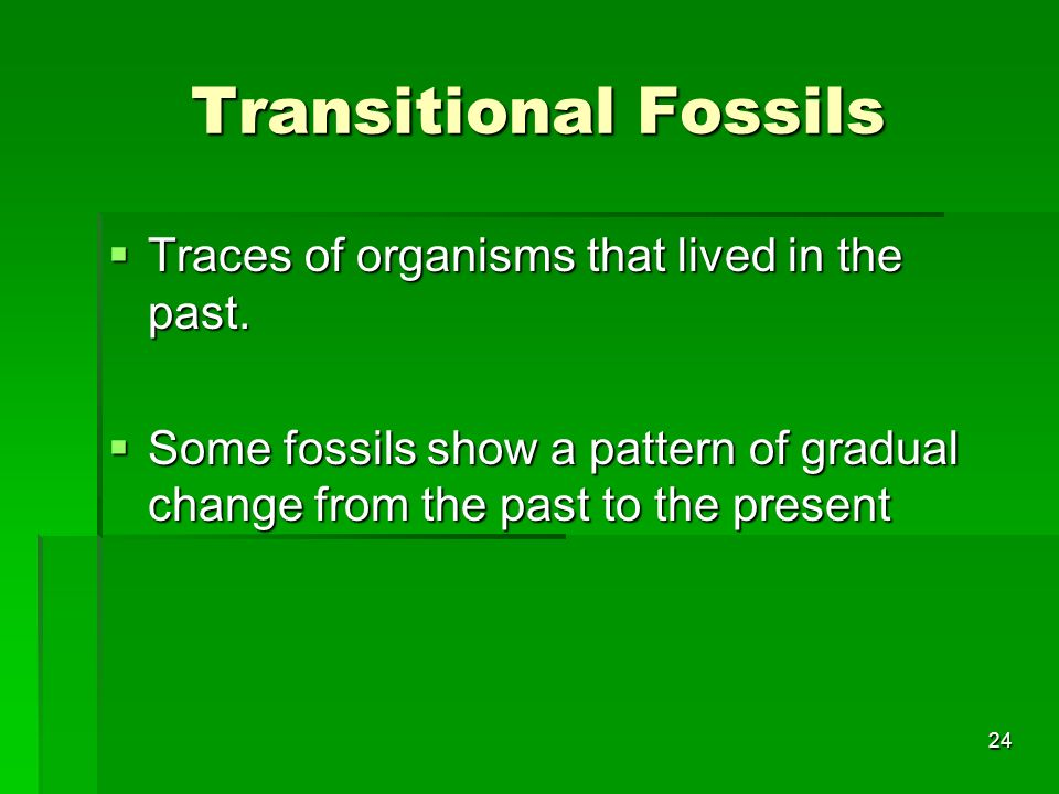 Transitional Fossils Traces of organisms that lived in the past.