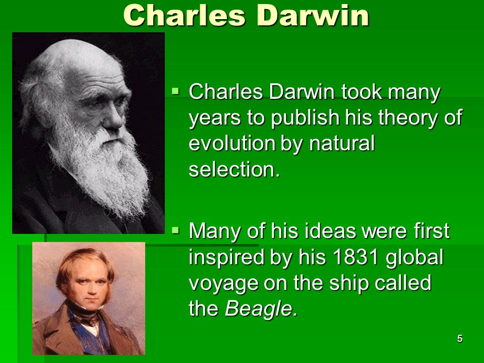 Charles Darwin Charles Darwin took many years to publish his theory of evolution by natural selection.