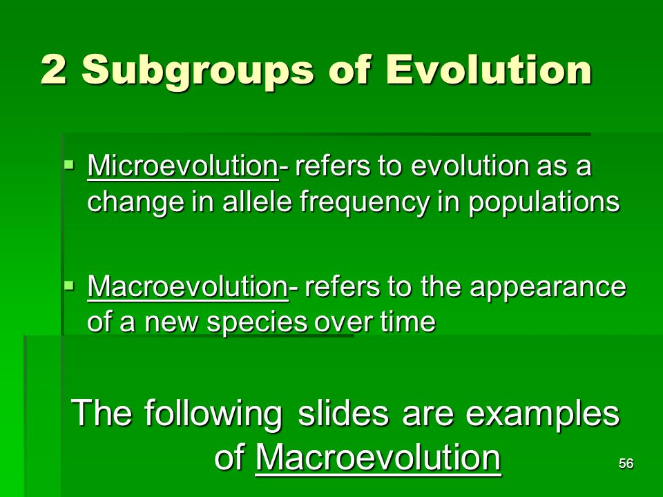 2 Subgroups of Evolution