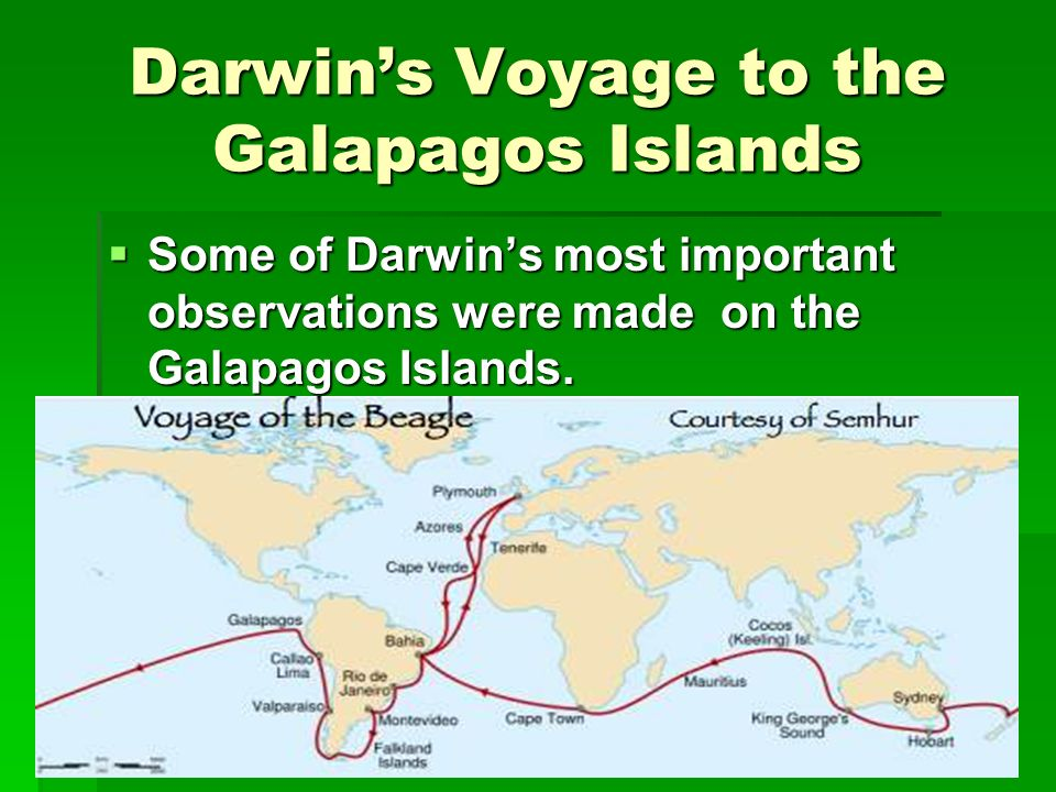 Darwin's Voyage to the Galapagos Islands