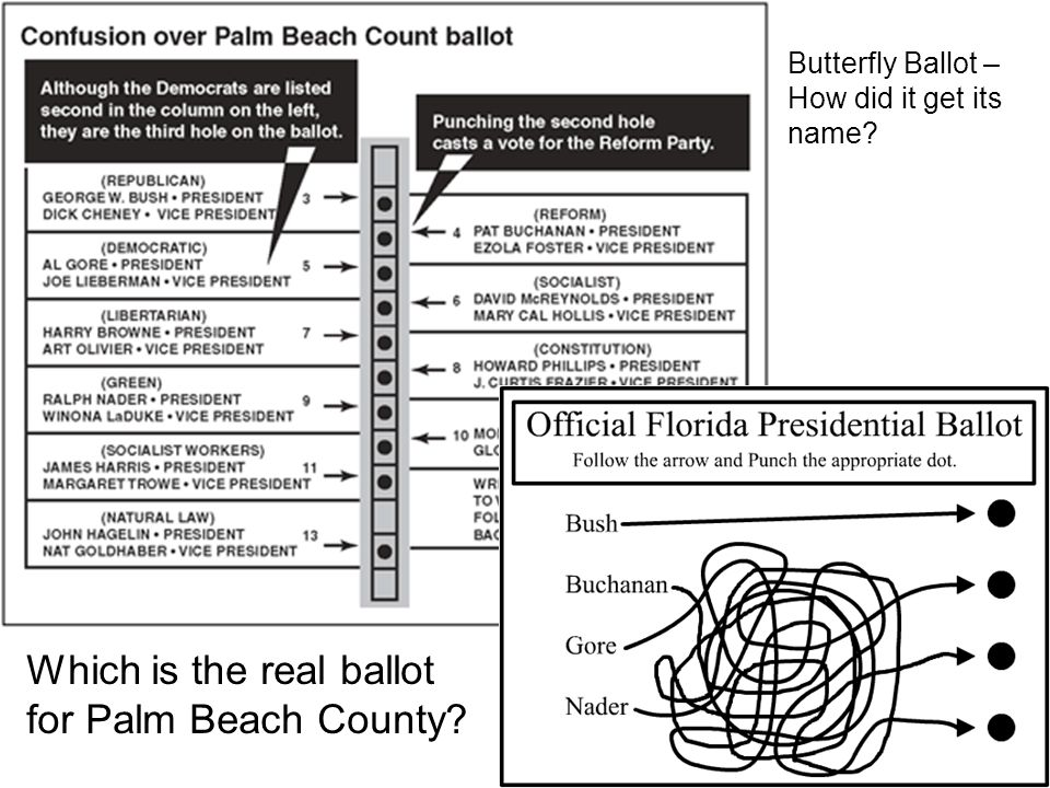 Which is the real ballot for Palm Beach County