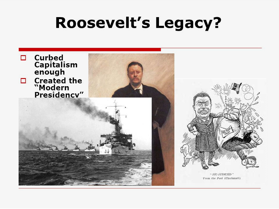 Roosevelt's Legacy Curbed Capitalism enough