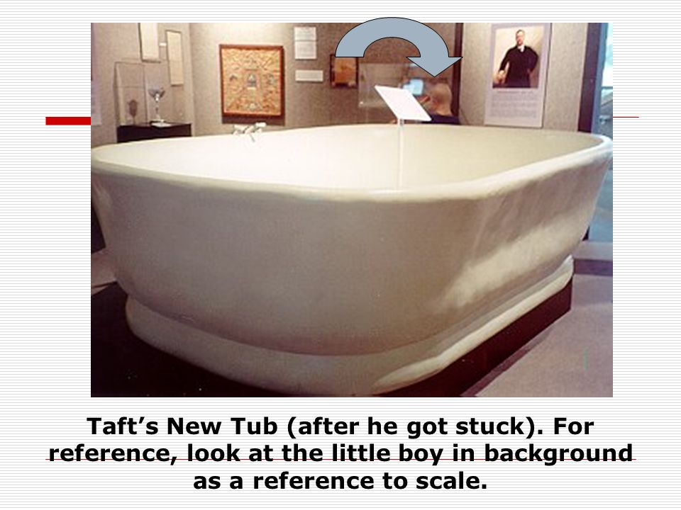 Taft's New Tub (after he got stuck)