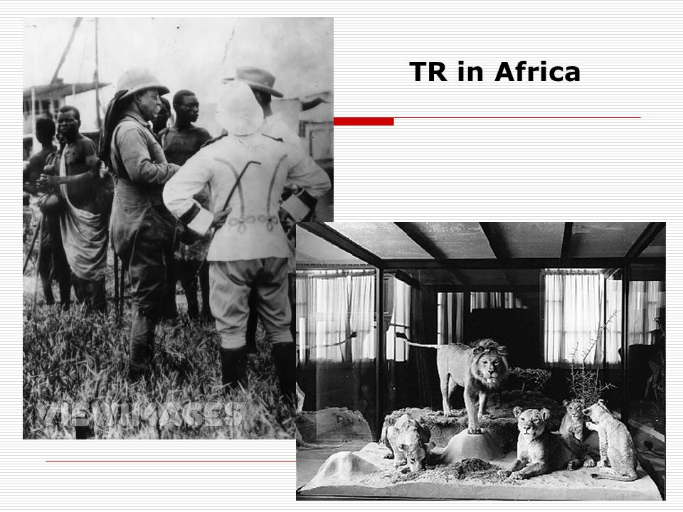 TR in Africa
