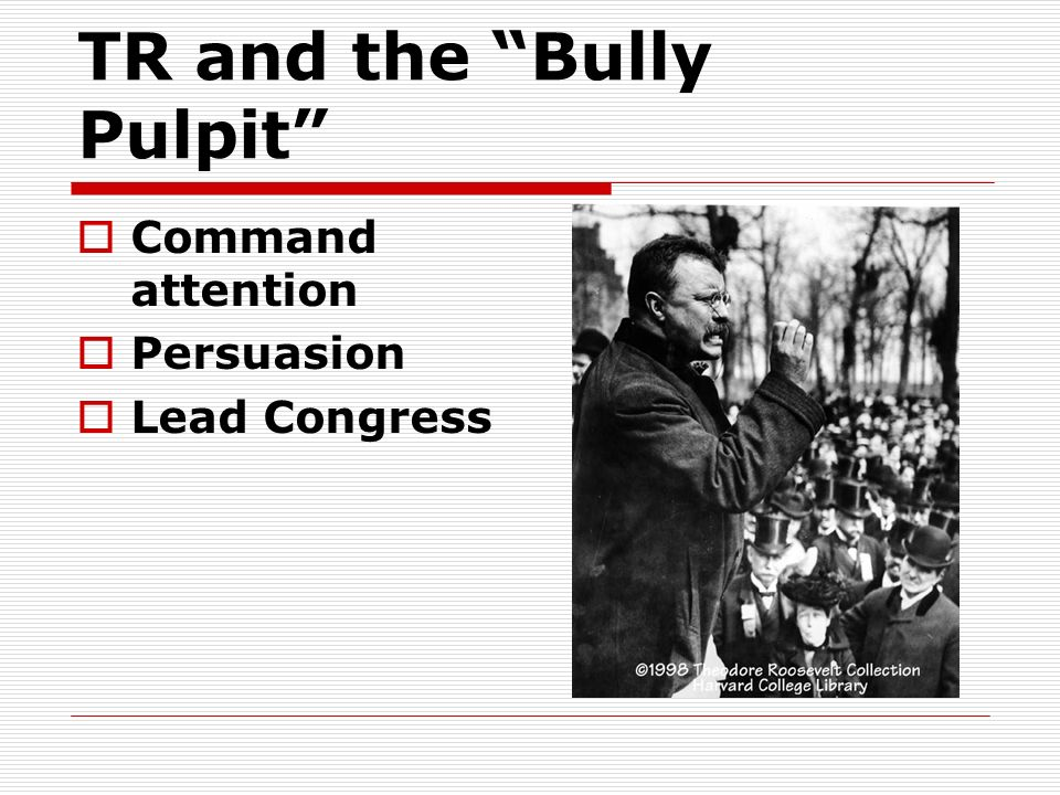 TR and the Bully Pulpit