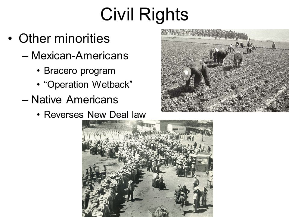 Civil Rights Other minorities Mexican-Americans Native Americans
