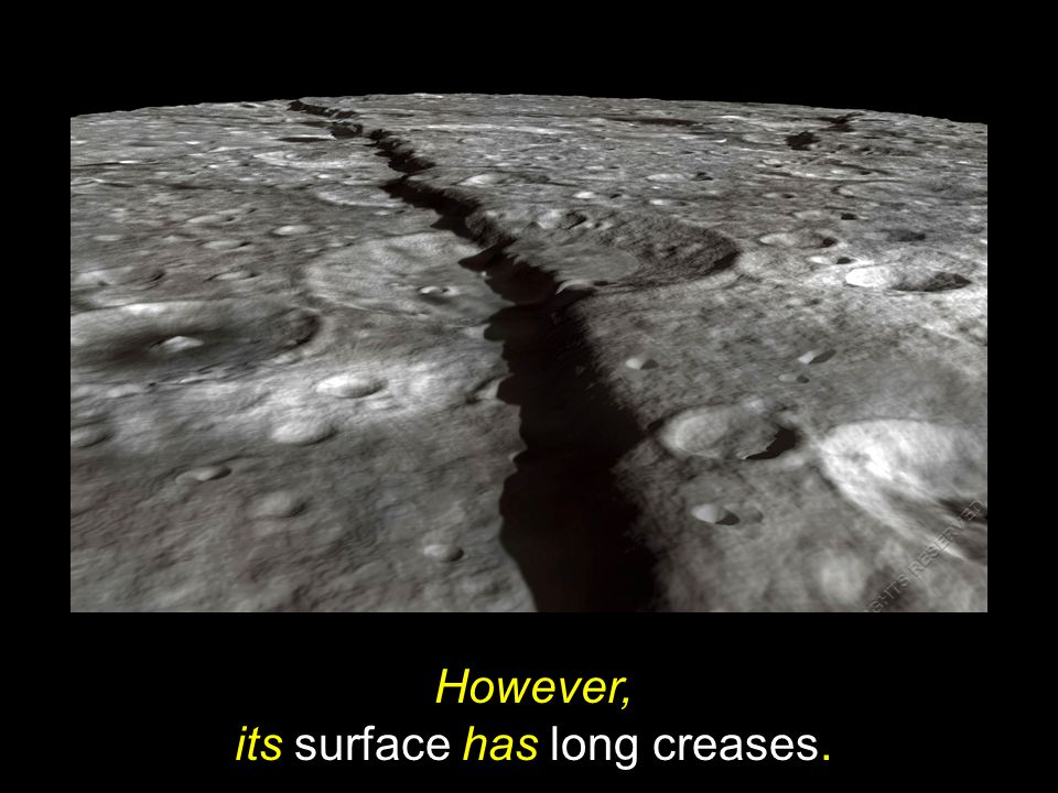 However, its surface has long creases.