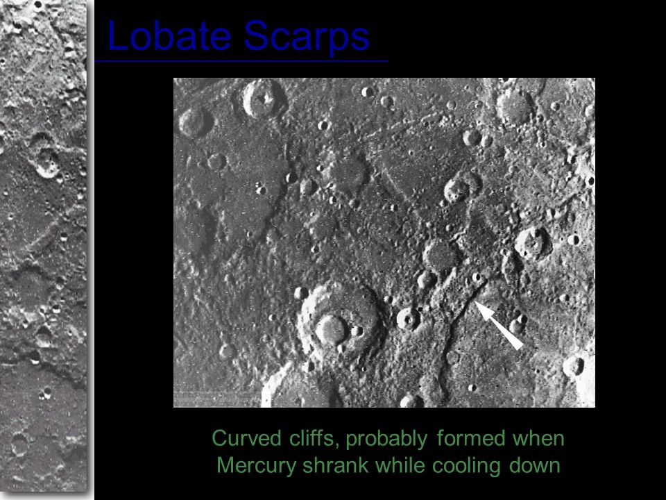 Curved cliffs, probably formed when Mercury shrank while cooling down