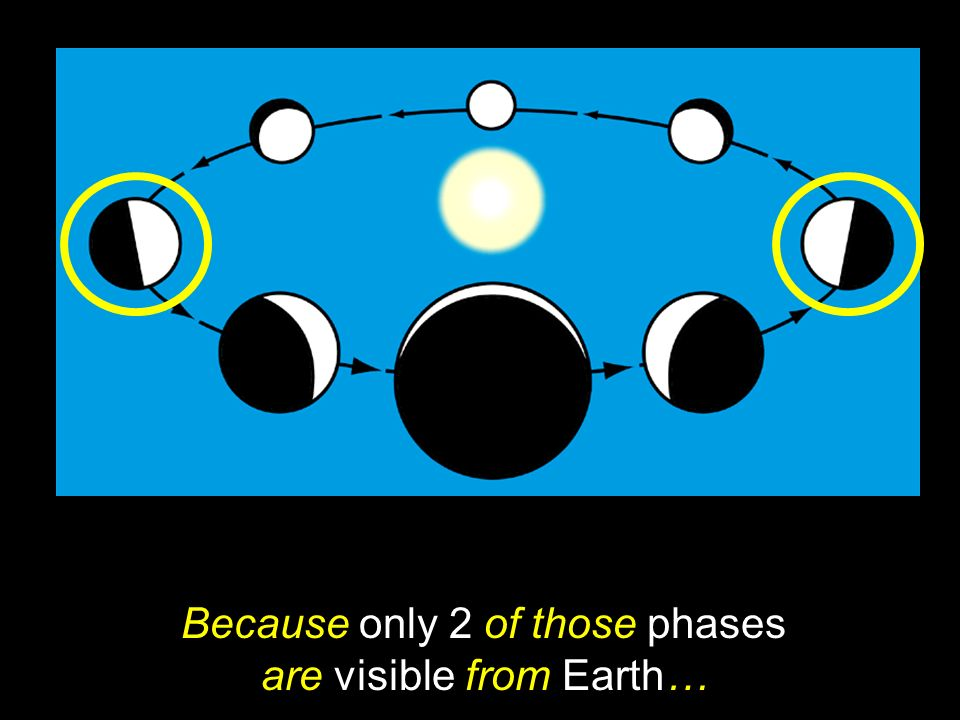 Because only 2 of those phases are visible from Earth…