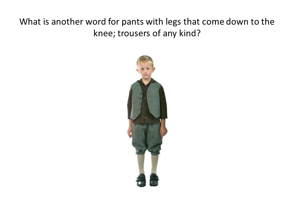 What is another word for pants with legs that come down to the knee; trousers of any kind