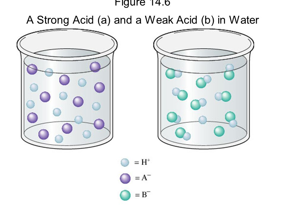 Figure 14.6 A Strong Acid (a) and a Weak Acid (b) in Water