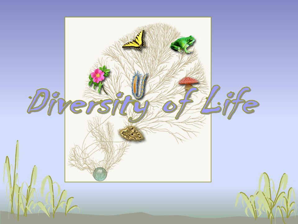 Diversity of Life