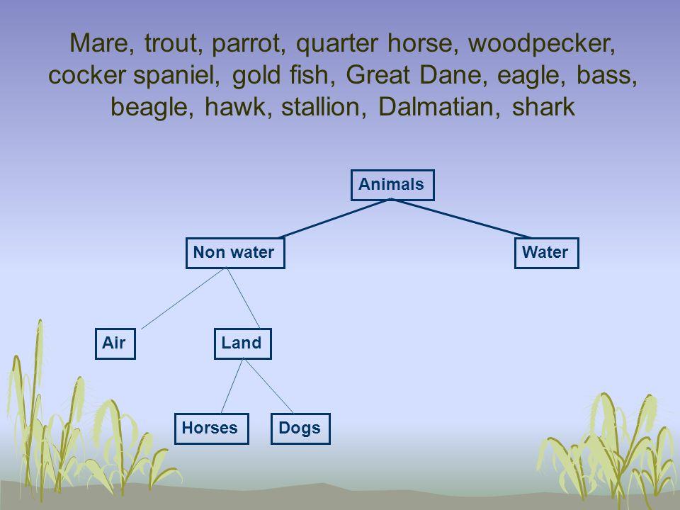 Mare, trout, parrot, quarter horse, woodpecker, cocker spaniel, gold fish, Great Dane, eagle, bass, beagle, hawk, stallion, Dalmatian, shark