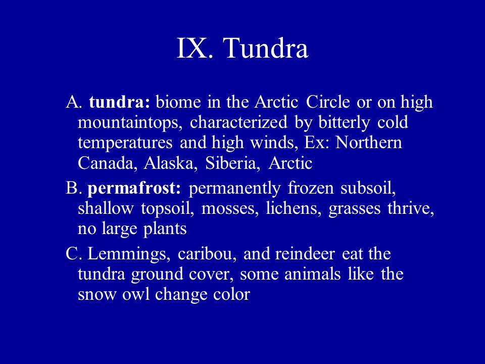 IX. Tundra