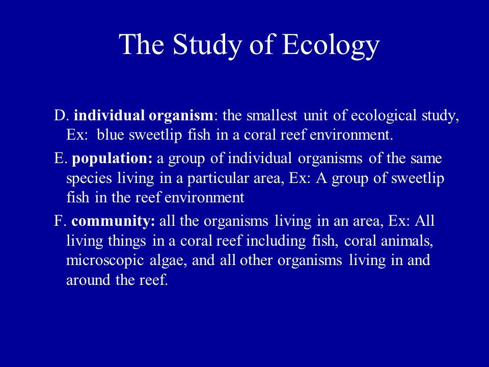 an analysis of hard coral organism species Life on the bahamian coral reef  • observe and identify the organisms in a bahamian coral reef ecosystem • construct a coral reef food web  hard corals have microscopic algae called zooxanthellae living within their tissues in a mutualistic symbiotic relationship zooxanthellae supply corals with food and oxygen.