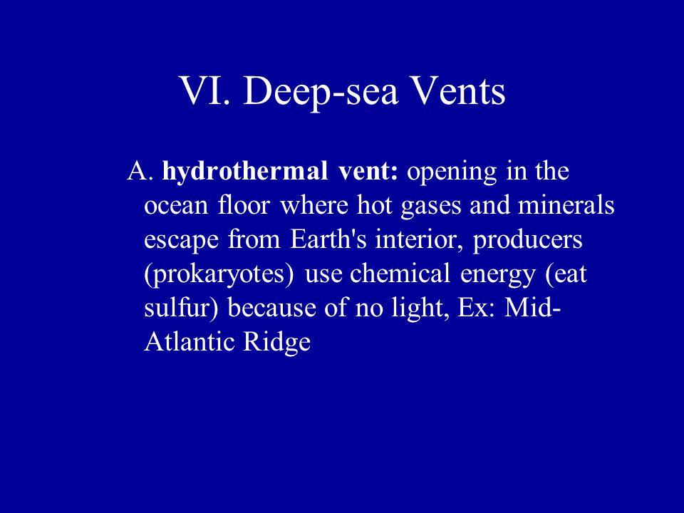 VI. Deep-sea Vents
