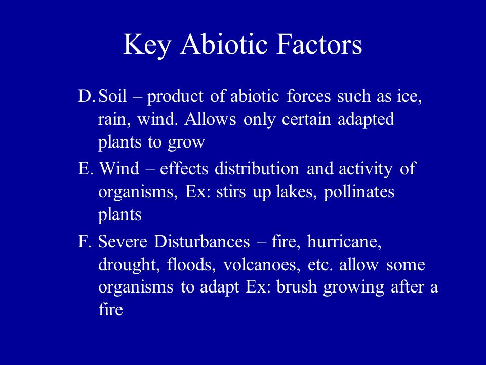 Key Abiotic Factors D. Soil – product of abiotic forces such as ice, rain, wind. Allows only certain adapted plants to grow.