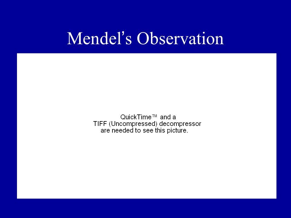 Mendel's Observation
