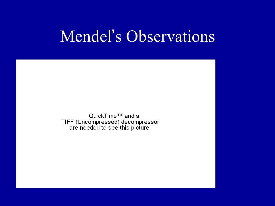 Mendel's Observations