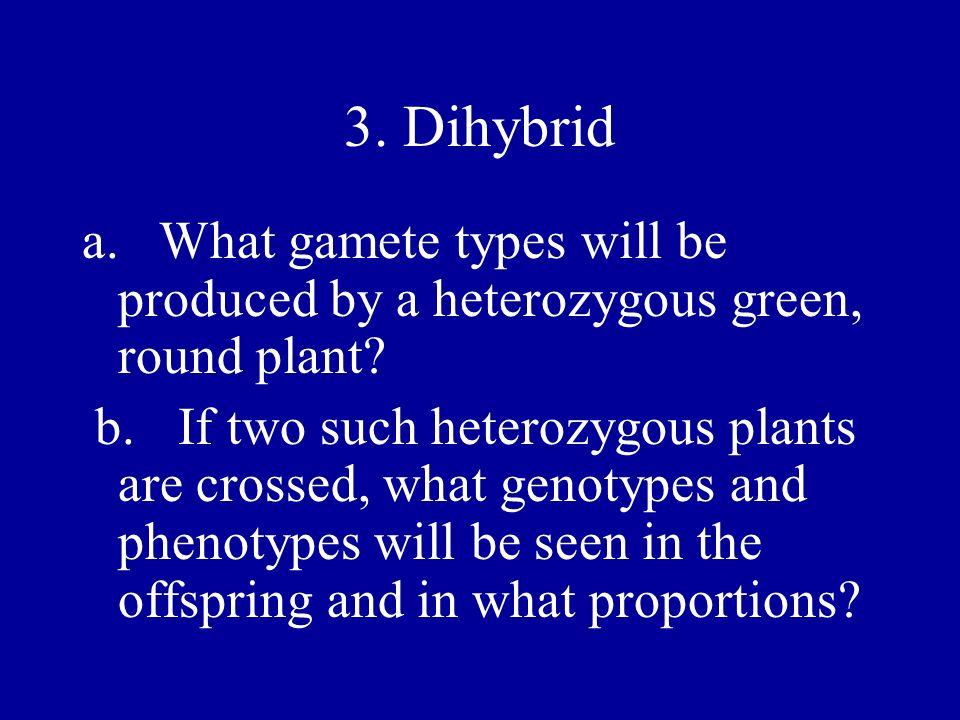 3. Dihybrid a. What gamete types will be produced by a heterozygous green, round plant