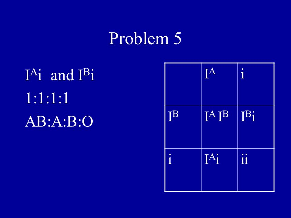 Problem 5 IAi and IBi 1:1:1:1 AB:A:B:O IA i IB IA IB IBi IAi ii