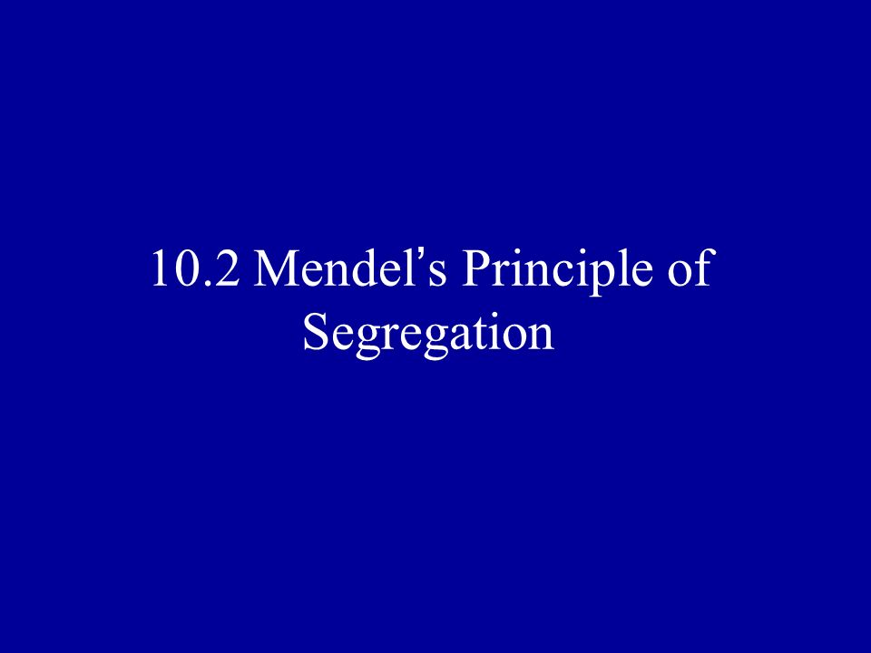 10.2 Mendel's Principle of Segregation