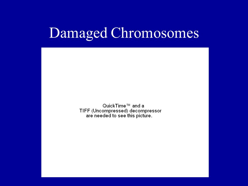 Damaged Chromosomes