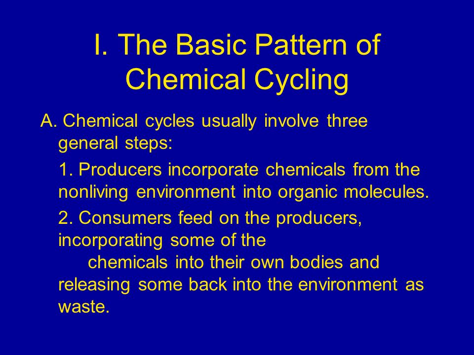 I. The Basic Pattern of Chemical Cycling