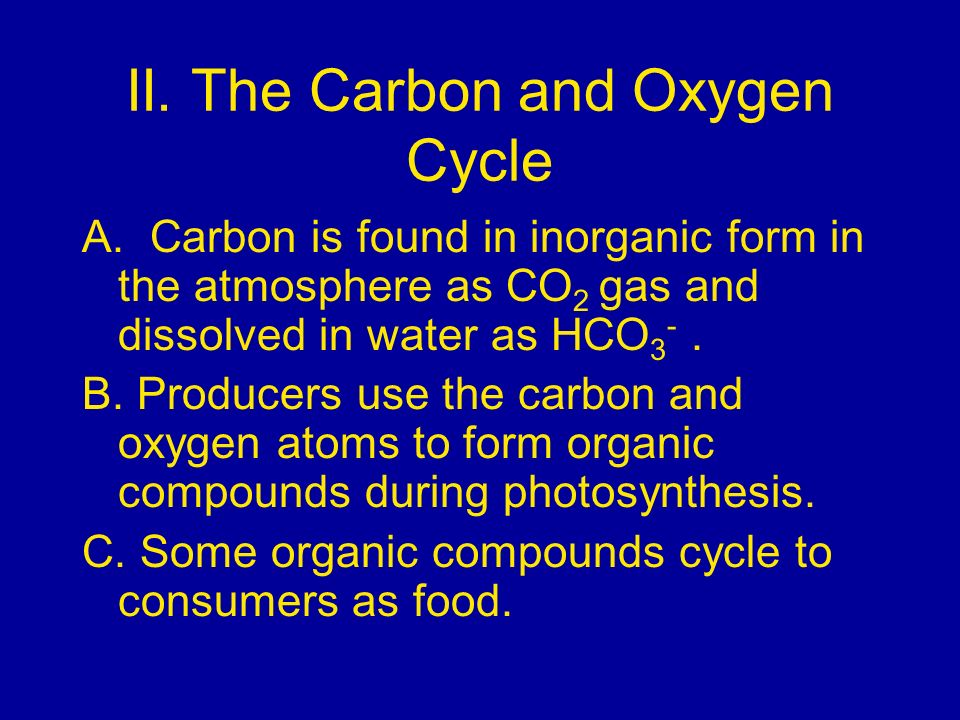 II. The Carbon and Oxygen Cycle