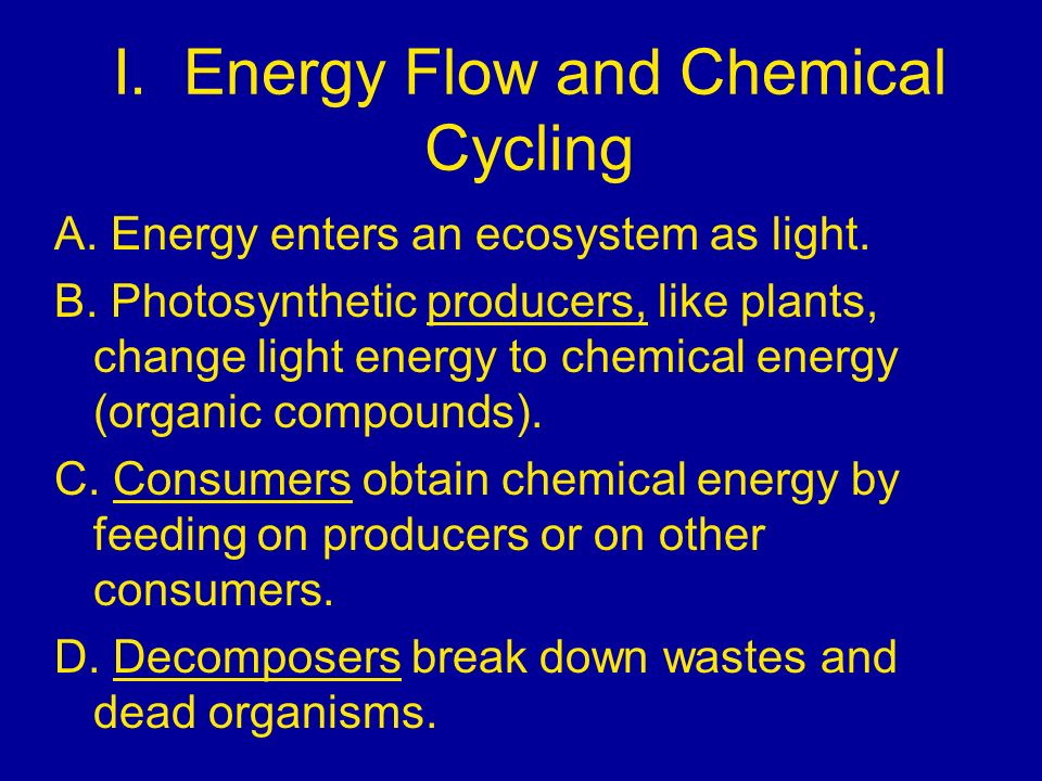 I. Energy Flow and Chemical Cycling