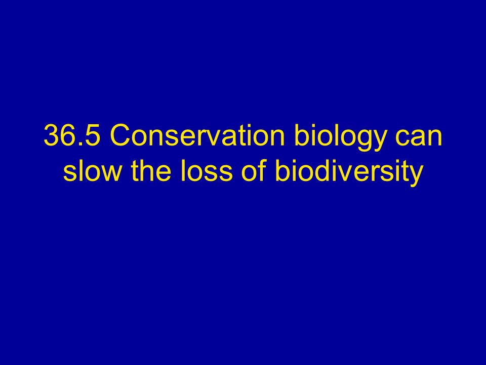 36.5 Conservation biology can slow the loss of biodiversity