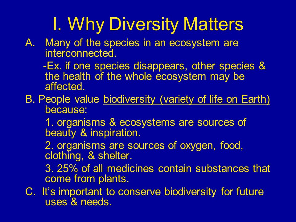 I. Why Diversity Matters