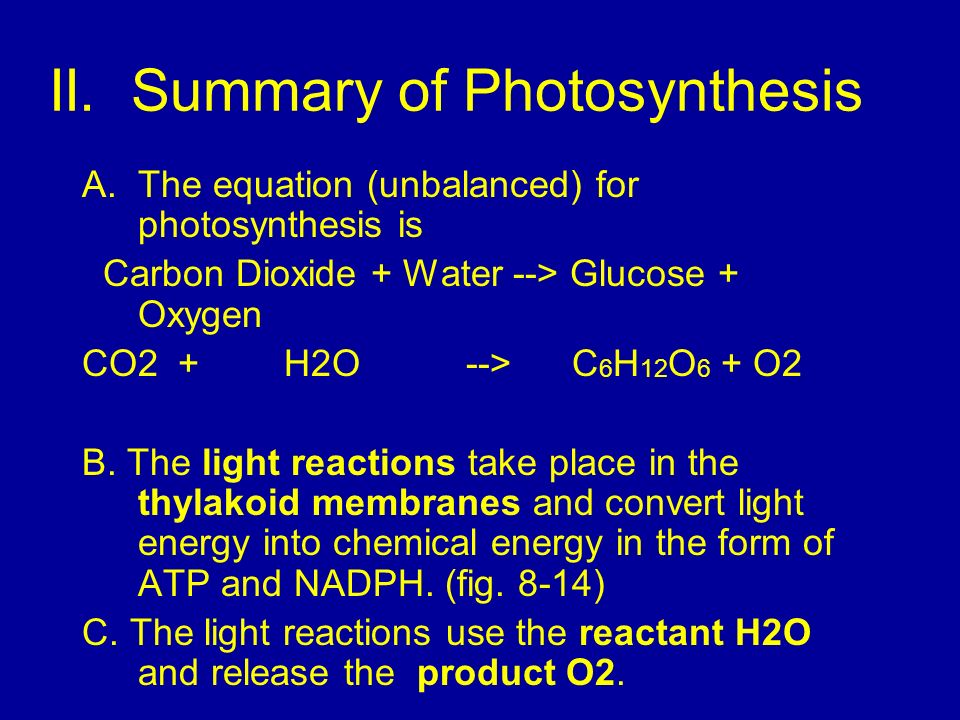II. Summary of Photosynthesis