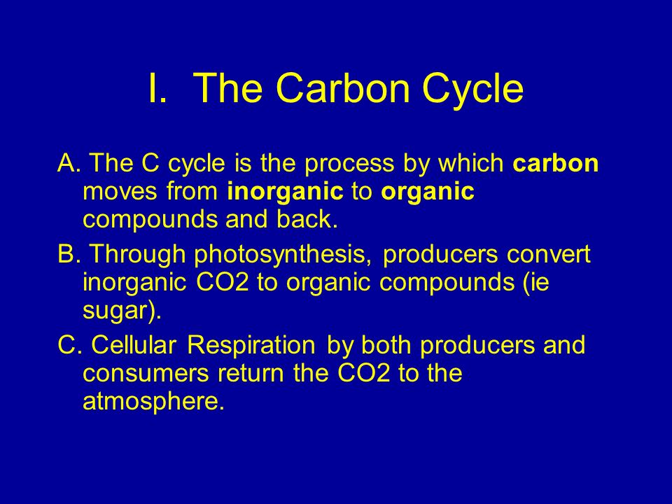 I. The Carbon Cycle A. The C cycle is the process by which carbon moves from inorganic to organic compounds and back.