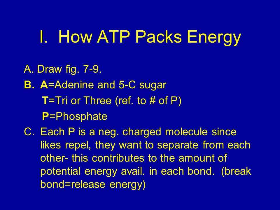 I. How ATP Packs Energy A. Draw fig. 7-9. A=Adenine and 5-C sugar