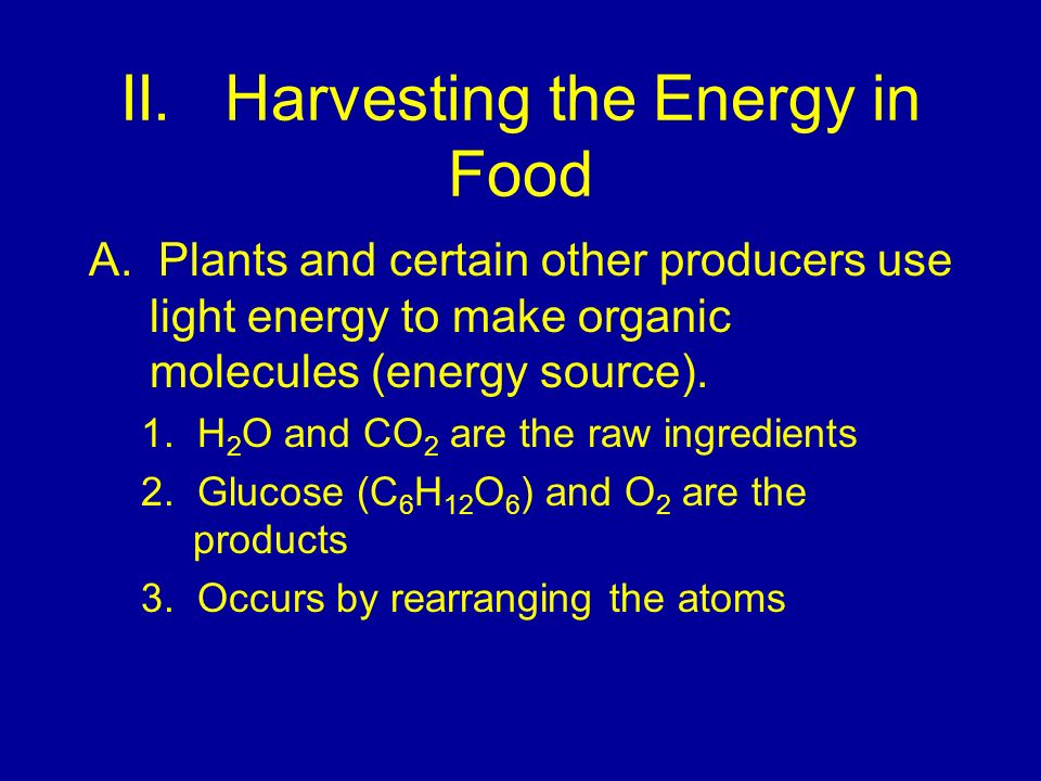 II. Harvesting the Energy in Food