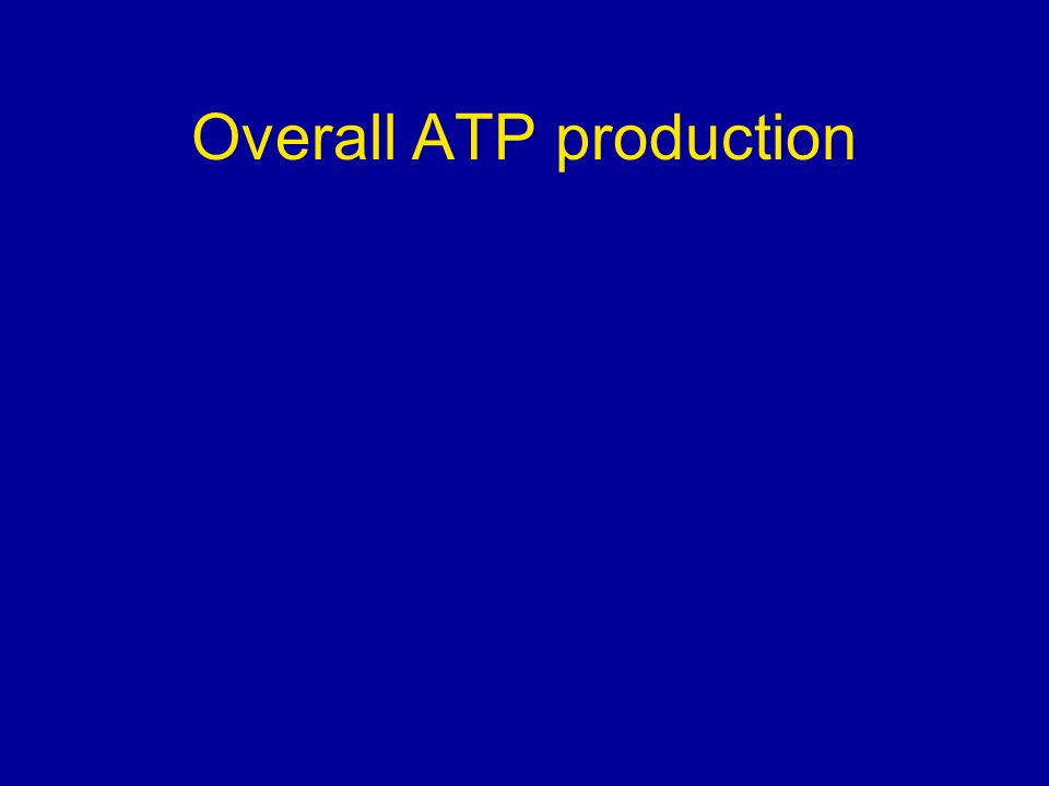 Overall ATP production