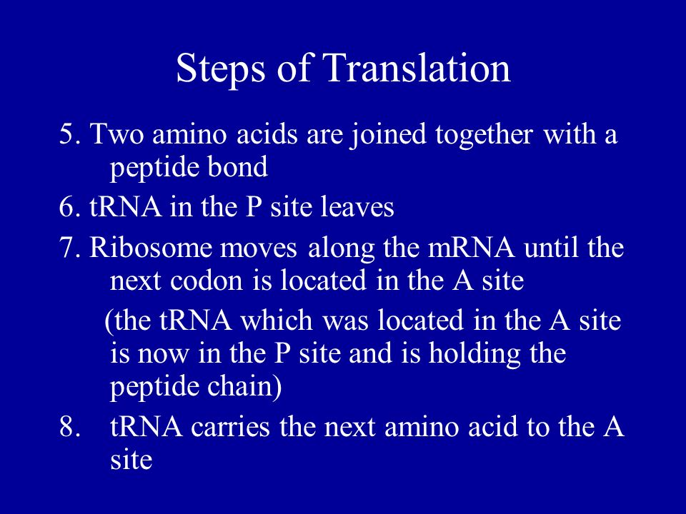 Steps of Translation5. Two amino acids are joined together with a peptide bond. 6. tRNA in the P site leaves.