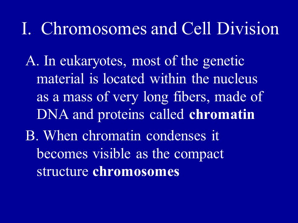 I. Chromosomes and Cell Division