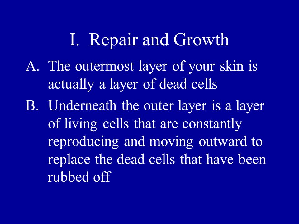 I. Repair and Growth The outermost layer of your skin is actually a layer of dead cells.