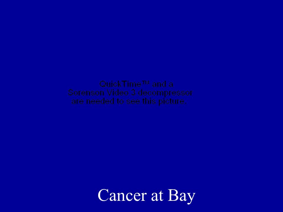 Cancer at Bay