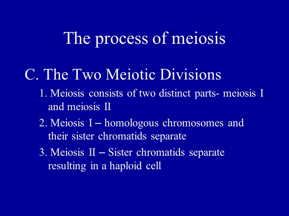 The process of meiosis C. The Two Meiotic Divisions