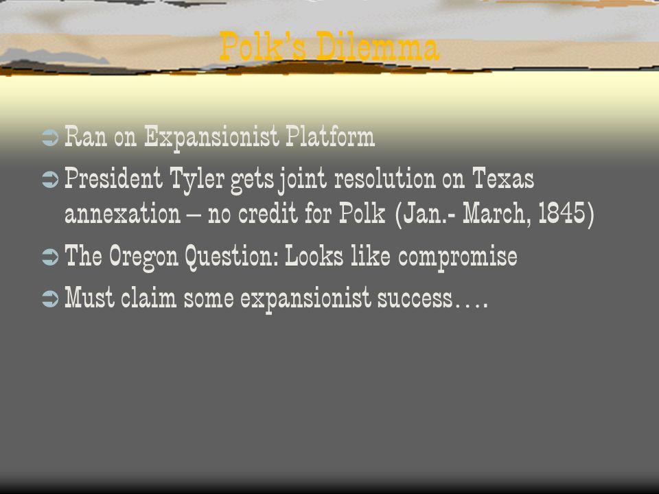 Polk's Dilemma Ran on Expansionist Platform