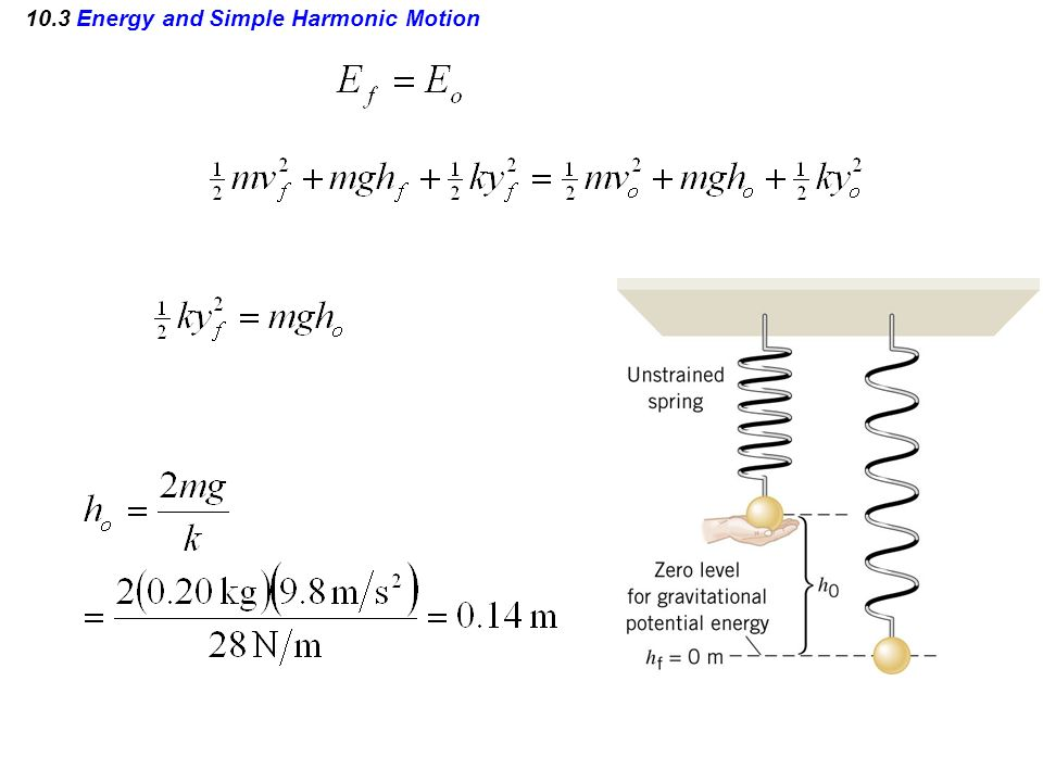 10.3 Energy and Simple Harmonic Motion