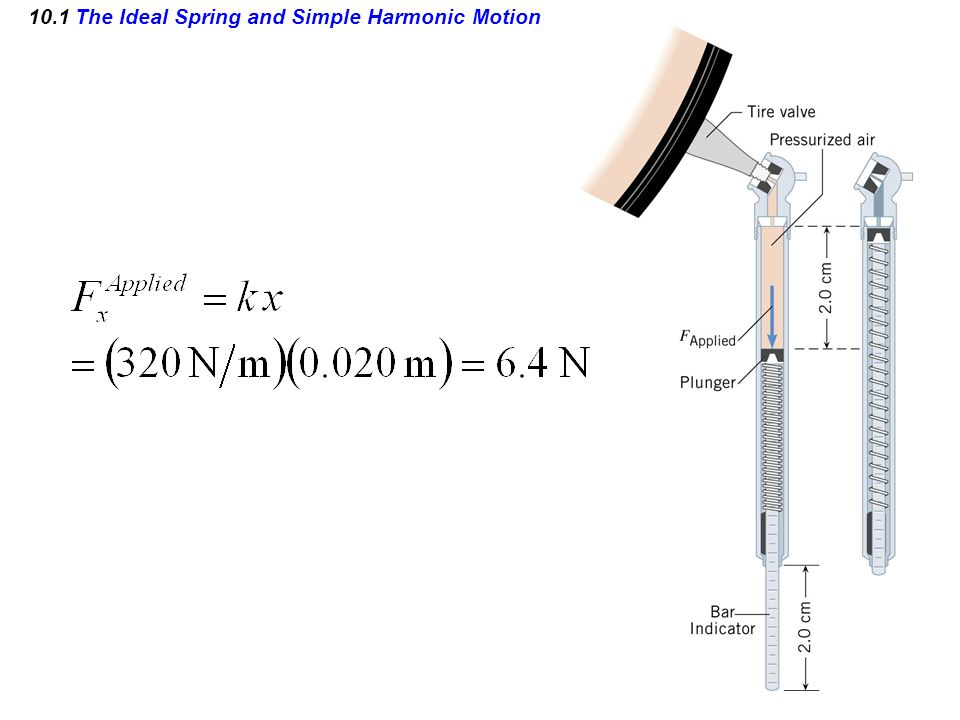 10.1 The Ideal Spring and Simple Harmonic Motion